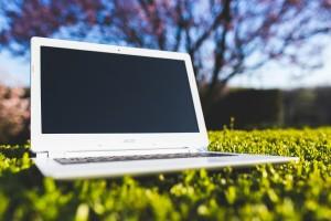 computer-grass