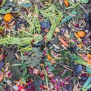 compost-1136403__180