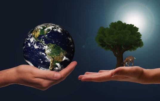 Dues mans: a l'esquerra el globus terraqui i a la dreta un arbre florit i un cèrvol