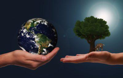 Es publiquen diversos serveis relacionats amb l'àmbit de la qualitat ambiental