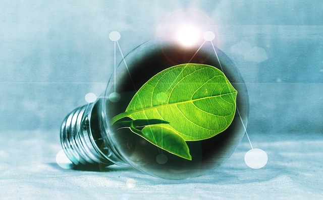 Bombeta amb una planta dins. Energia verda