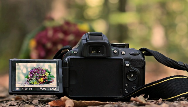 Càmera de gravar