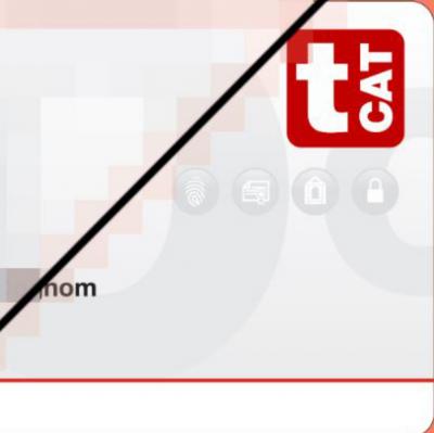 Aconsegueix el teu certificat T-CAT P sense moure't de casa (no funciona el servei de missatgeria de T-CAT)