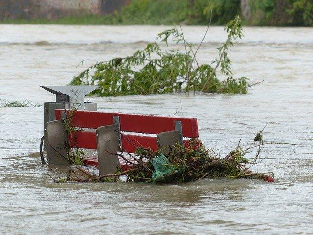 Un banc inundat per una crescuda
