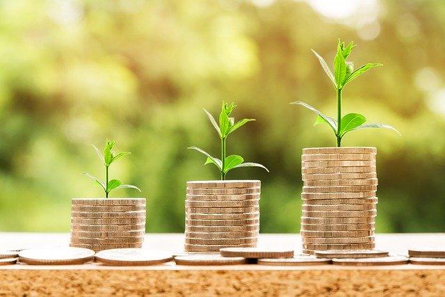 3 pilons de diners dels quals neix una planta